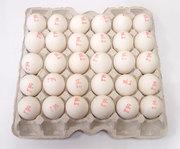 Яйцо куриное столовое нефасованное 1-ой категории Шымкент