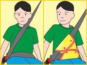 Адаптер для ремня безопасности и аксессуары прочее
