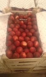 Персики (нектарин) в большом объёме